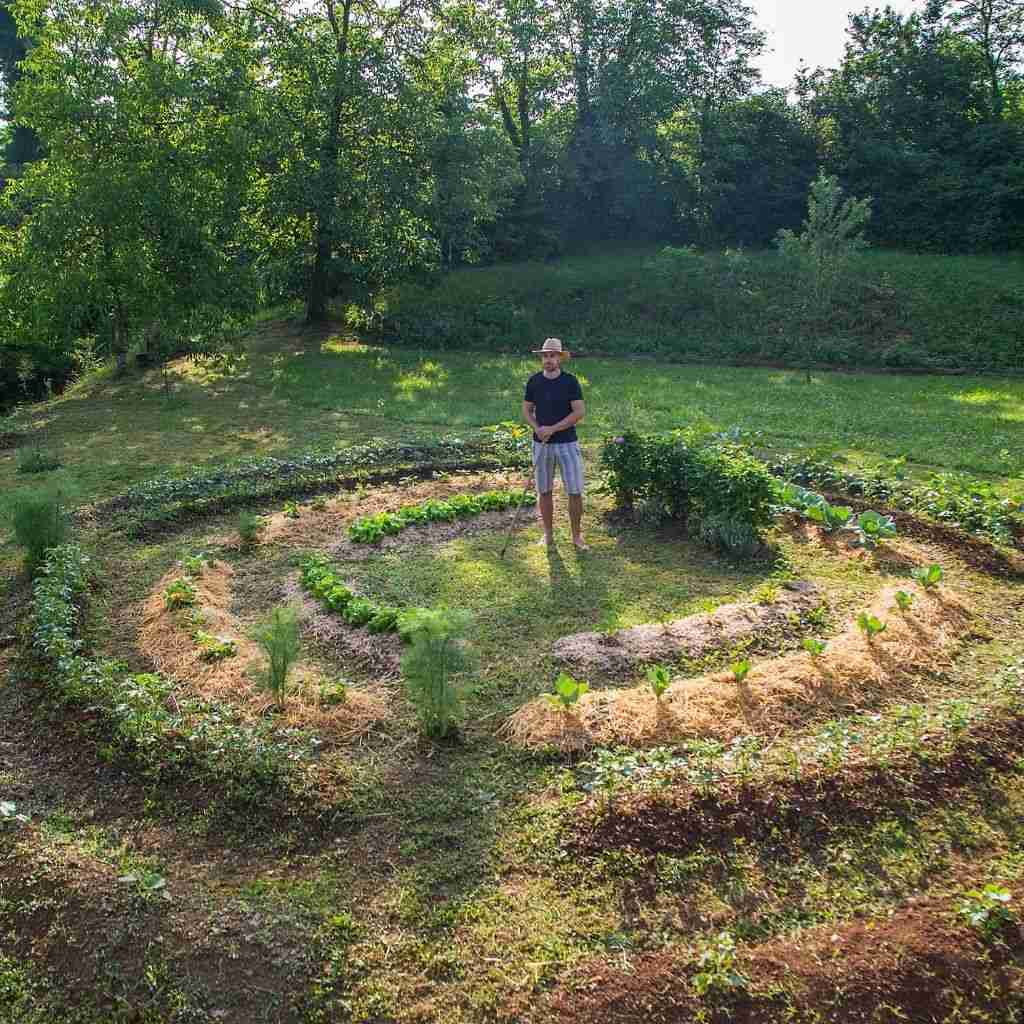 basics of permaculture