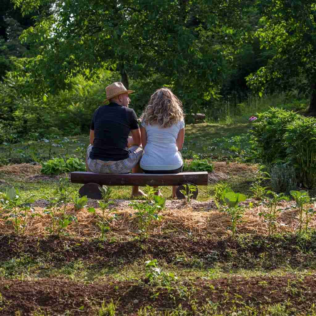 gardening and permaculture